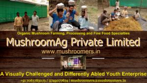 www.mushroomers.in