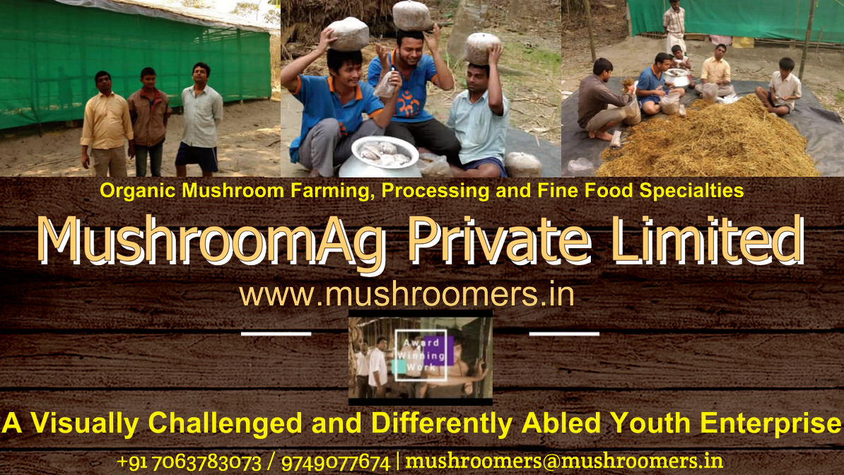 www.mushroomers.in