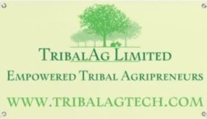 www.tribalag.in